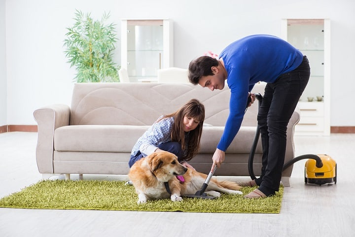best pet hair vacuum
