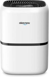 Best Air Purifier Review